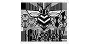 new colony digital